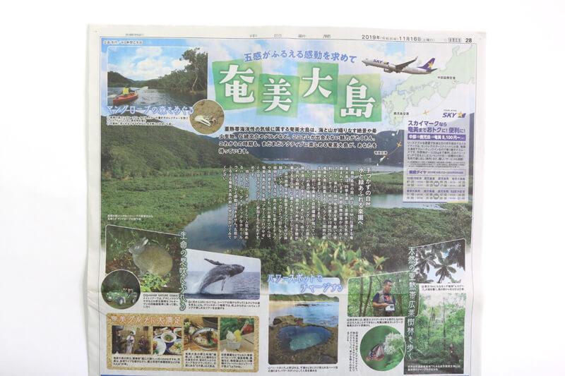 奄美大島の紙面