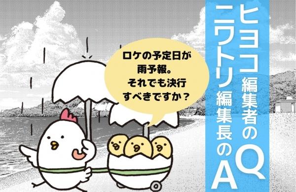 1週間後のロケが雨予報……。取材を決行すべき?/ヒヨコ編集者の質問・ニワトリ編集長の回答[第3回]
