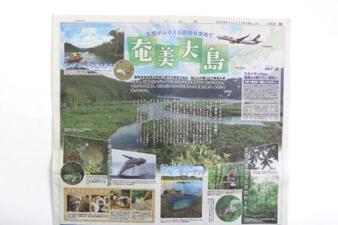 [実績紹介]スカイマーク奄美大島企画/中日新聞